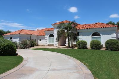 Paradise Valley AZ Single Family Home For Sale: $1,600,000