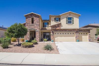 Surprise Single Family Home For Sale: 18480 W Desert Lane
