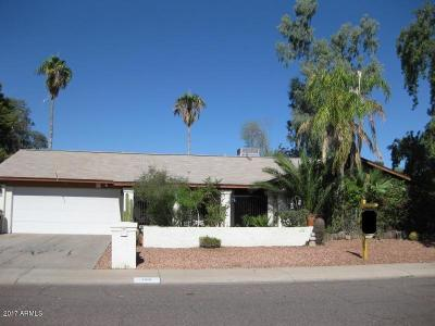 Phoenix Single Family Home For Sale: 1010 W Renee Drive