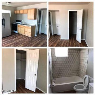 Phoenix Multi Family Home For Sale: 2841 Melvin Street