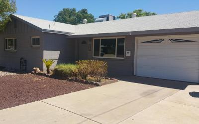 Phoenix Single Family Home For Sale: 205 E Orchid Lane