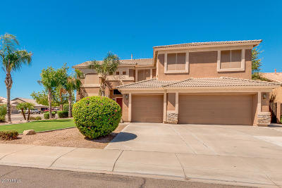 Gilbert Single Family Home For Sale: 848 E Carla Vista Drive