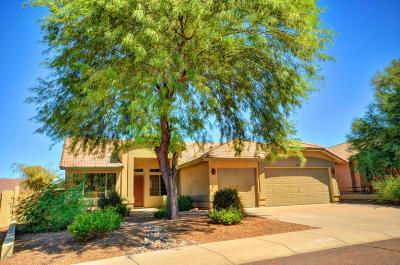 Goodyear Single Family Home For Sale: 11241 S Hopi Street