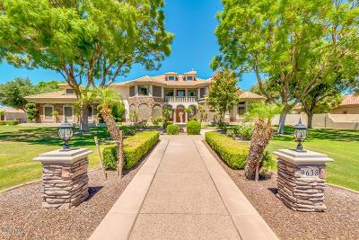 Peoria Single Family Home For Sale: 9638 W Electra Lane