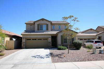 San Tan Valley Single Family Home For Sale: 28335 N Cactus Flower Circle