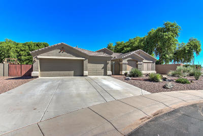 Chandler Single Family Home For Sale: 4122 S Crossbow Place