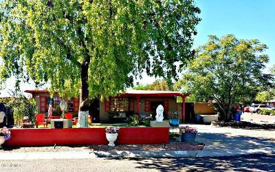 Phoenix Single Family Home For Sale: 3211 W Lamar Road