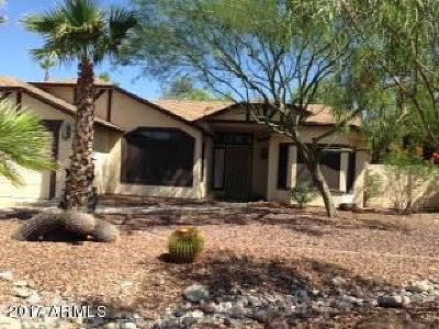 Mesa Single Family Home For Sale: 6528 E McLellan Road