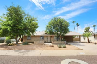 Phoenix Single Family Home For Sale: 3935 E Shaw Butte Drive