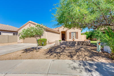 Tempe Single Family Home For Sale: 7725 S El Camino Drive