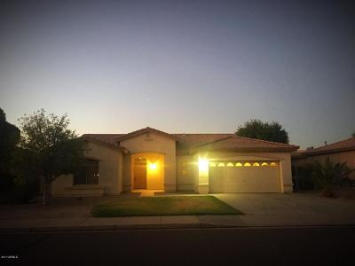 Queen Creek Single Family Home For Sale: 21168 E Stirrup Street
