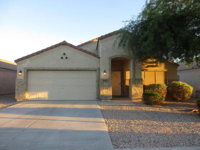 Sun City Rental For Rent: 12029 W Melinda Lane