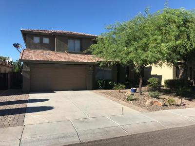 Phoenix Single Family Home For Sale: 2214 W Spur Drive