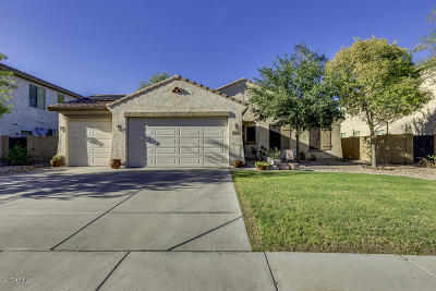 Queen Creek Single Family Home For Sale: 2954 W White Canyon Road