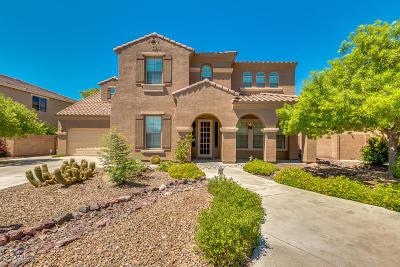 Chandler Single Family Home For Sale: 3410 E Lark Drive