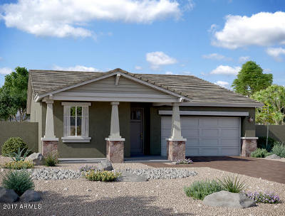 Mesa AZ Single Family Home For Sale: $272,134