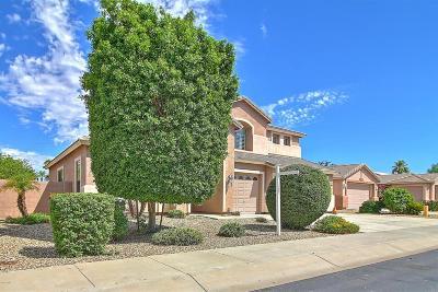 Goodyear Single Family Home For Sale: 13970 W Woodbridge Avenue