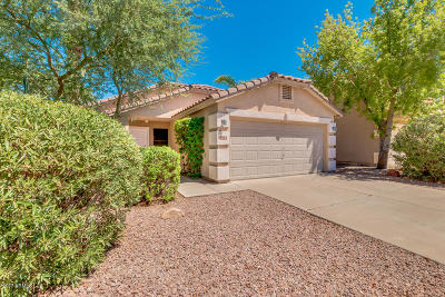 Gilbert Single Family Home For Sale: 2082 E Palomino Drive