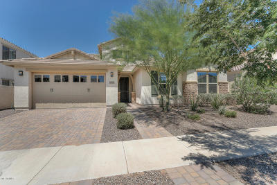 Mesa AZ Single Family Home For Sale: $455,000