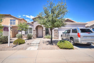 San Tan Valley, Queen Creek Single Family Home For Sale: 3202 E Cowboy Cove Trail