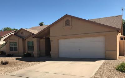 Mesa AZ Single Family Home For Sale: $282,400
