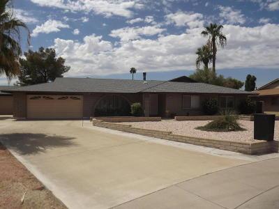 Glendale Single Family Home For Sale: 4307 W Seldon Lane