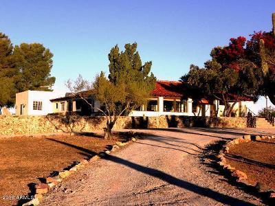 Wickenburg Single Family Home For Sale: 790 Bralliar Road