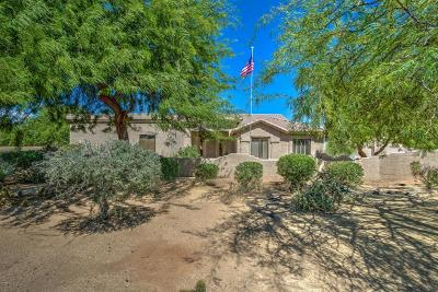 Cave Creek Single Family Home For Sale: 5702 E Desert Winds Drive