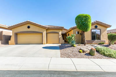 Anthem Single Family Home For Sale: 2811 W Plum Hollow Drive