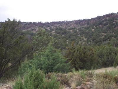 Yavapai County Residential Lots & Land For Sale: Lot 381 Medicine Man