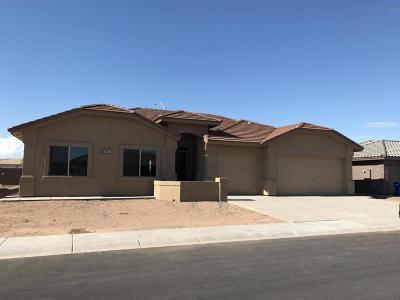 Mesa Single Family Home For Sale: 11440 E Olla Avenue