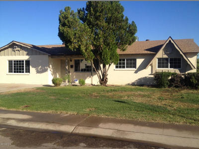 Phoenix Single Family Home For Sale: 3122 W Joan De Arc Avenue