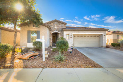 Gilbert Single Family Home For Sale: 4041 E Lodgepole Drive