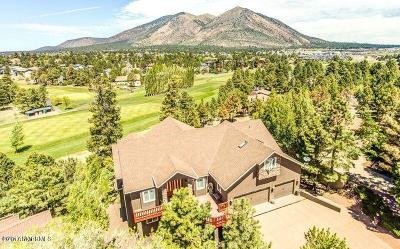 Flagstaff Single Family Home For Sale: 2480 N Broken Circle Road