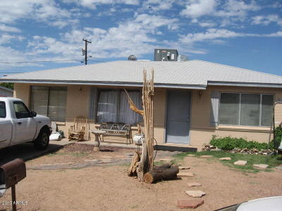 Phoenix Single Family Home For Sale: 10418 N 18th Avenue