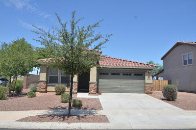 Maricopa County, Pinal County Single Family Home For Sale: 17746 W Red Bird Road