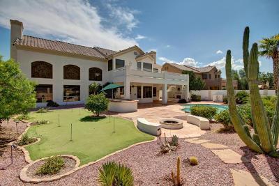 Phoenix Single Family Home For Sale: 916 E Desert Flower Lane