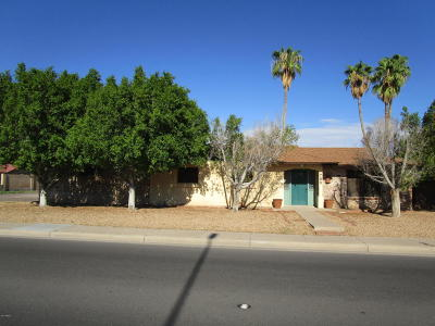 Chandler Single Family Home For Sale: 703 N Alma School Road