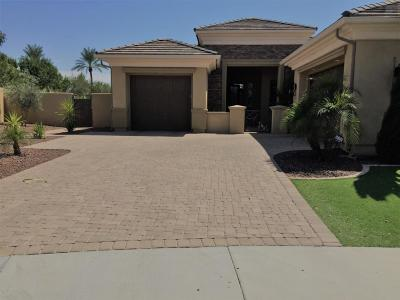 Chandler Single Family Home For Sale: 159 W Tonto Drive