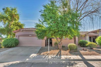 Maricopa County Single Family Home For Sale: 4999 S Lantana Lane