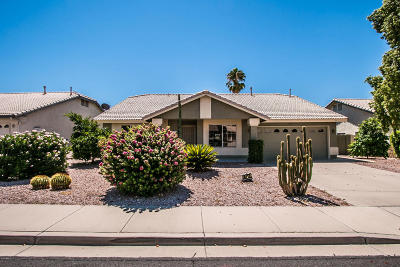 Mesa Single Family Home For Sale: 6417 E Melrose Street