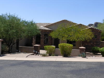 Gold Canyon Single Family Home For Sale: 5180 S Noche Estrellada Way