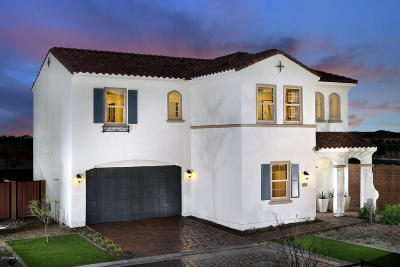 Mesa Single Family Home For Sale: 9735 E Kinetic Drive