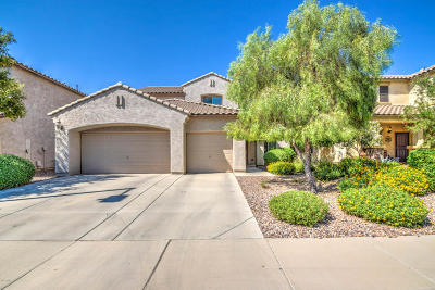 Florence Single Family Home For Sale: 6075 W Estancia Way