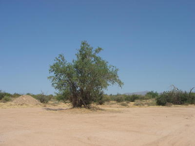 Scottsdale Residential Lots & Land For Sale: 28xxx N 168th Street