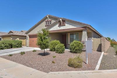 Surprise Single Family Home For Sale: 18334 W Bridger Street