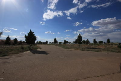 Douglas Residential Lots & Land For Sale: 3851 Camino Del Rancho Road