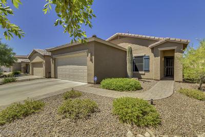 Anthem Single Family Home For Sale: 41252 N Ericson Lane