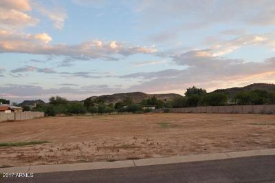 Glendale Residential Lots & Land For Sale: 5351 W Park View Lane