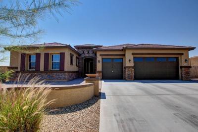 Litchfield Park Single Family Home For Sale: 12833 W Marlette Avenue